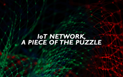 IoT Network, a piece of the Puzzle